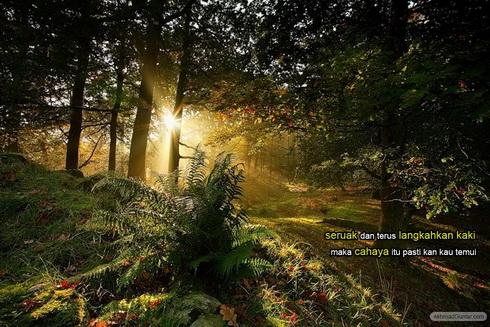Sesungguhnya di depan sana pasti ada cahaya dan hikmah yang terang, sesungguhnya di depan sana pasti ada kebaikan yang membahagiakan.