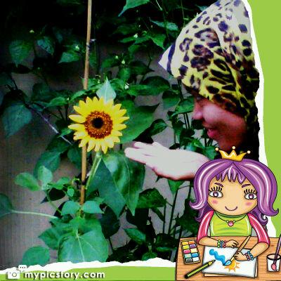 Near Sun and Flower